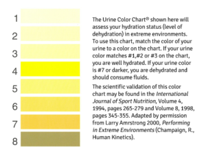 Armstrong Urine Color Chart