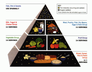 Food Pyramid Scam