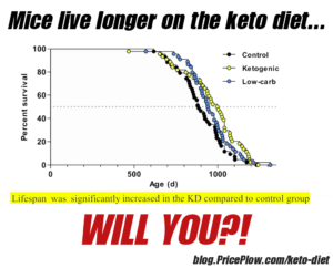 Keto Diet Longevity
